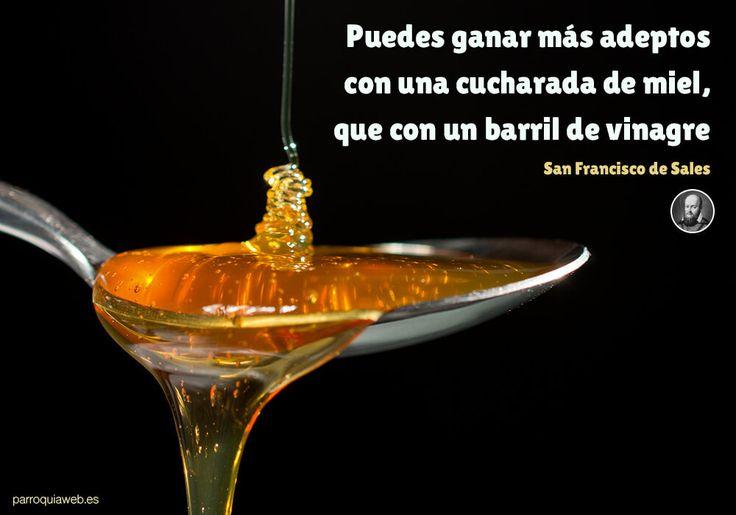 Puedes ganar más adeptos con una cucharada de miel, que con un barril de vinagre - San Francisco de Sales - ParroquiaWeb www.sta.cr/2ZaU2