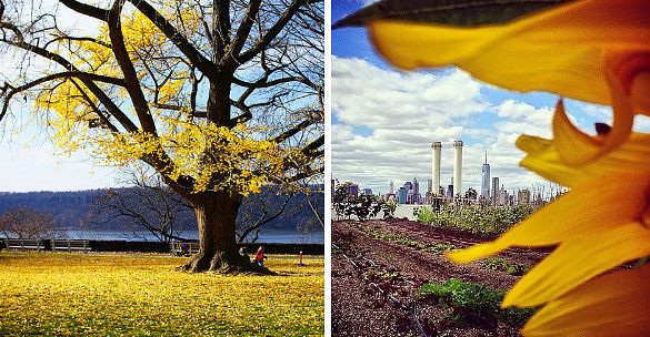 29 Perfectly Autumn Things You Must Do In NYC This Fall- Buzzfeed