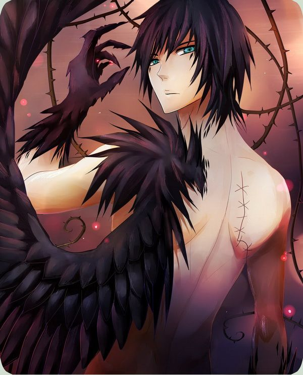 """I'm zulo. I'm half angle half demon . My wings are black . One wing was stolen from me . I'm an outcast . Not welcomed with the angels or Demons"""