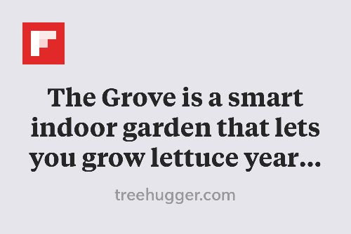 The Grove is a smart indoor garden that lets you grow lettuce year round http://flip.it/kXAiB