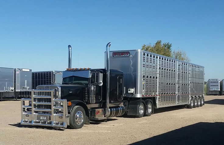 182 Best Images About Wilson Livestock Trailers On Pinterest