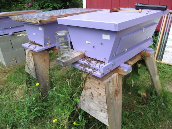 how to make a top bar beehive