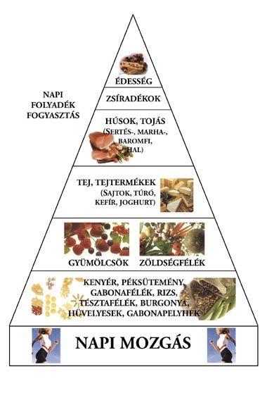 táplálkozási piramis *http://www.medimix.hu/cikk.php?cid=59