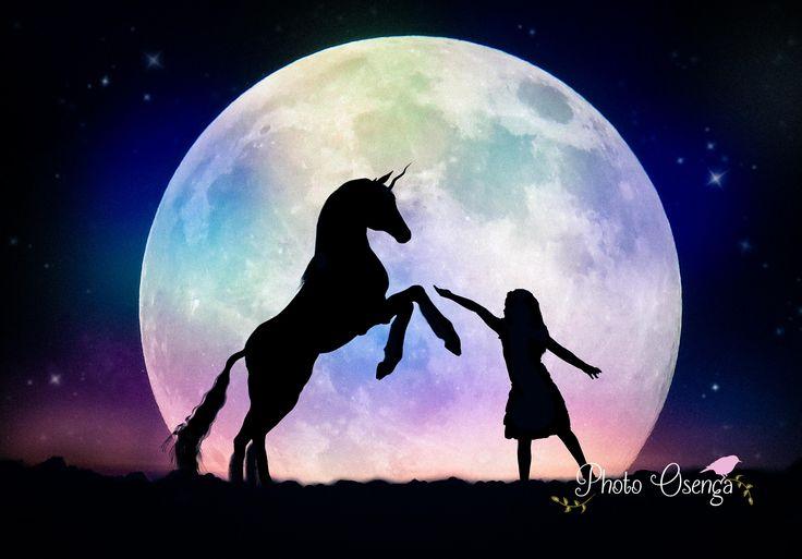 Unicorn - Fairytale Shoot by Photo Osenga