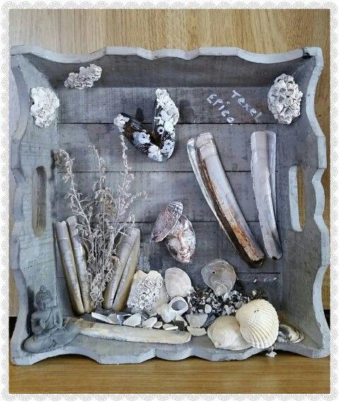 Knutselen met schelpen. ...texel