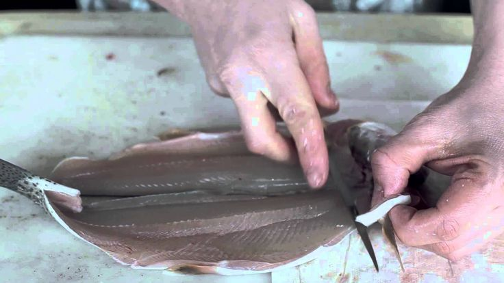 How to fillet and skin a Rainbow Trout the right way- Great tutorial!