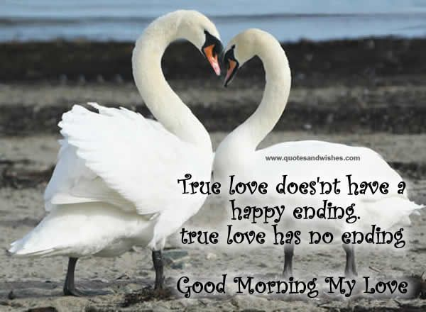 love you cards for her | true love does nt have a happy ending true love