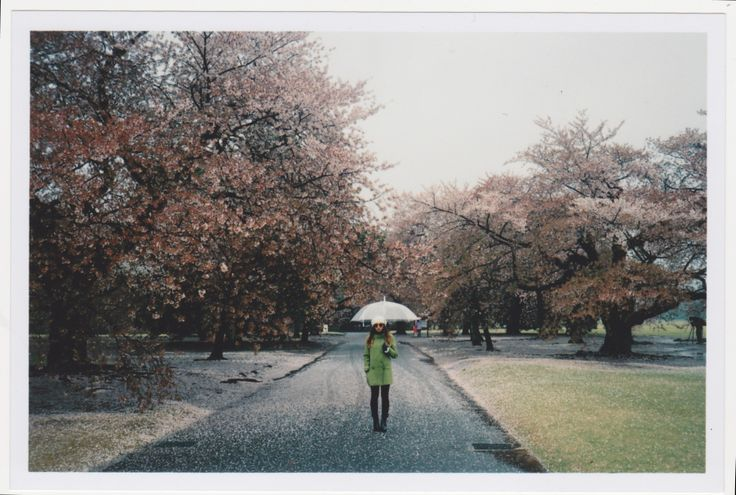 Walking around the Shinjuku Gyoen National Garden with Willy, wearing my green peacoat, black Cheap Mondays, black boots by Shubar, black scarf and Mink Pink sunglasses. Clear umbrella kept me from the icey rain.