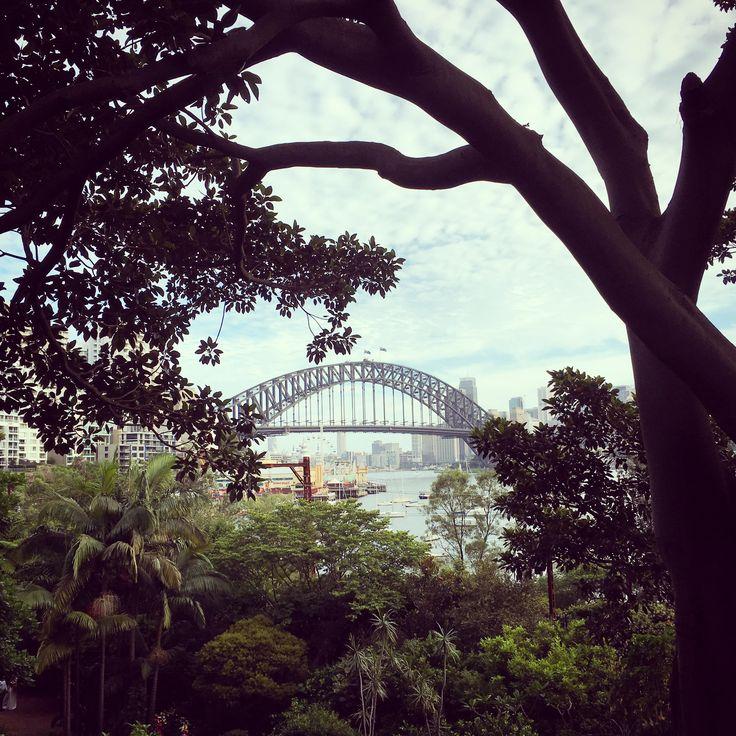 #SecretGarden #Sydney #Australia