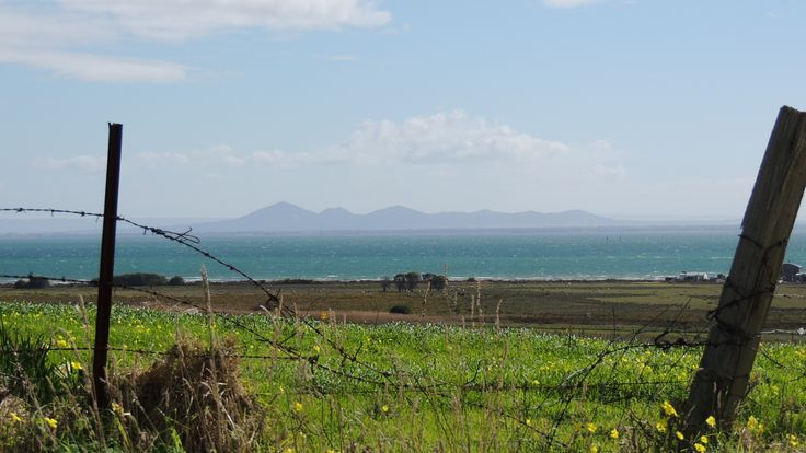 The You Yangs from Lincoln Farm, Portarlington. by JillB