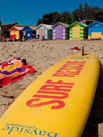 Surf Life savers board