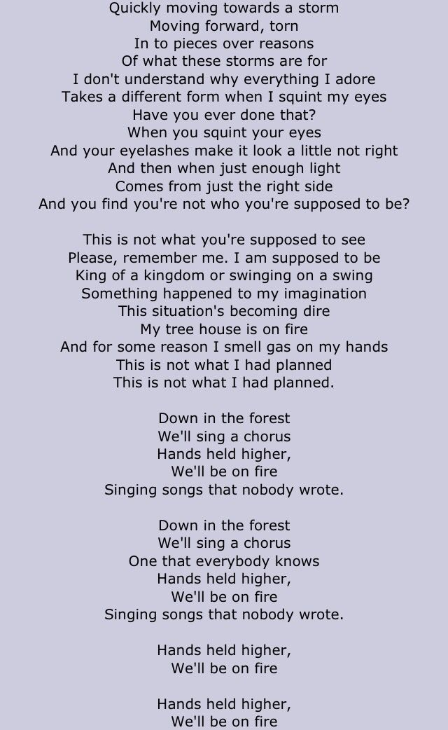 Rogue Wave - Forest Lyrics | Musixmatch