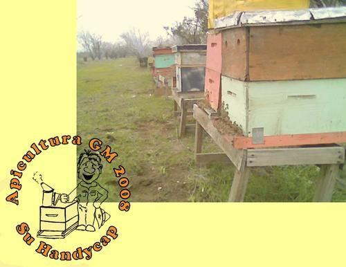 El+asesino+de+las+abejas+se+llama+Nosema+:+[b]A+cuatro+años+sin+abejas,+hoy+podemos+mostrar+esto.+Ganado+con+sacrificio,+constancia,+asesoramiento,+manutención <BR> <BR>Planes+de+trabajo.+Recuerde+que+podemos+trabajar+para+usted,+previo+pago <BR> <BR>Vendemos+colmenas+pobladas+y+núcleos+mas+asesoria+.+Invierno <BR> <BR>08/9796809 <BR> <BR> <BR>Reinas+fecundadas+9500+++IVA <BR> <BR>Recuerde+nosotros+asemos+...