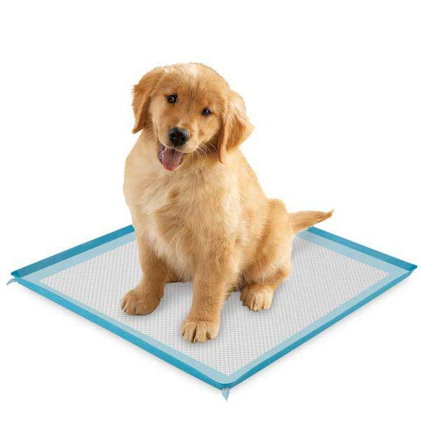 Pet owners will love the simple, yet effective design of our durable ClearQuest® Silicone Puppy Pad Holders. - Holder keeps pads securely in place and provides added protection against leaks - Easy to