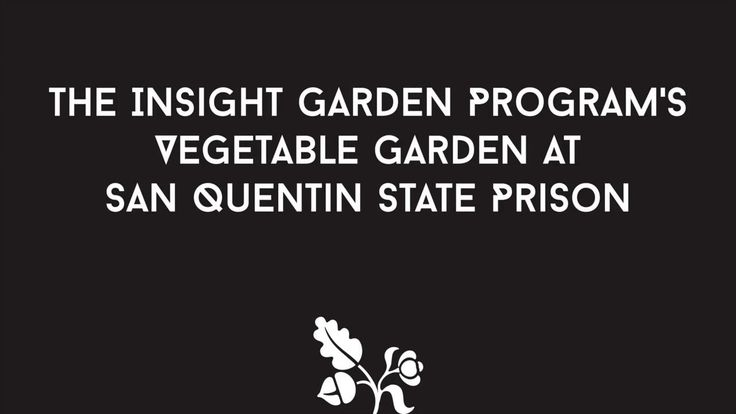 The Insight Garden Program's Vegetable Garden at San Quentin State Prison