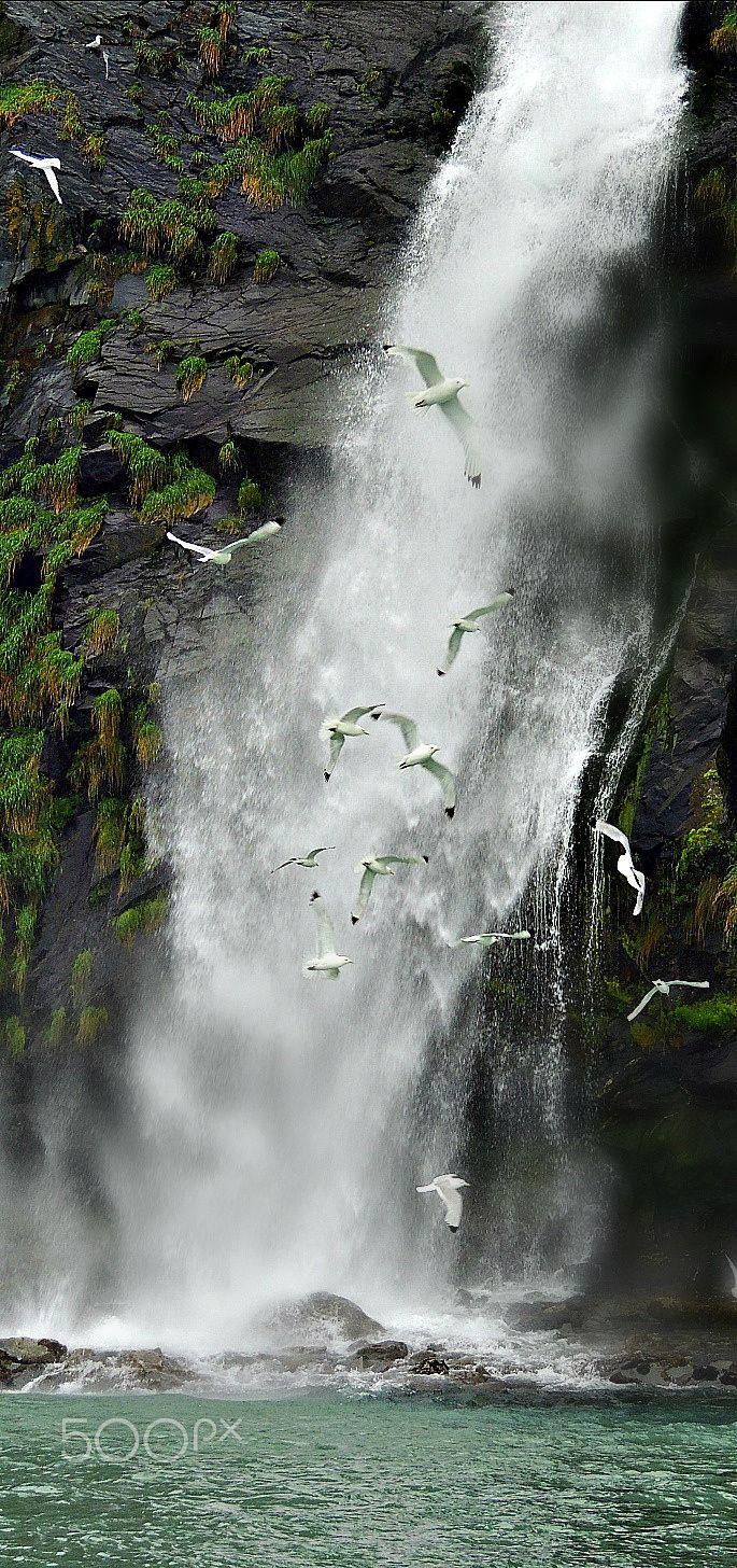 Waterfall - Breathtaking Waterfall at Prince William Sound, Whittier, Alaska