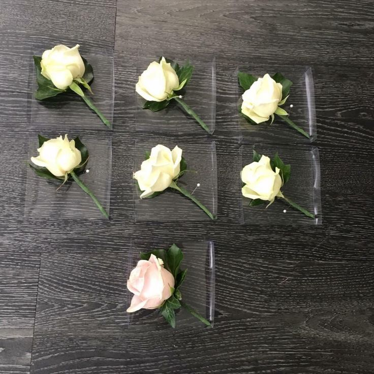 Roses buttonholes  #buttonholes #flowers #weddingflowers Www.thelythamweddingcompany.co.uk