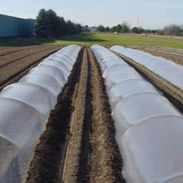 Smooth galvanized steel wire hoops are easy to install, effective, and resist corrosion. They are great for creating row tunnels for season extension and other crop protection and are quick and easy to install.