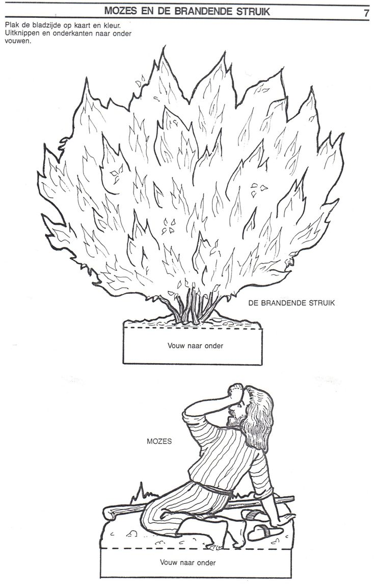 Uncategorized Moses And The Burning Bush Coloring Pages 25 unique burning bush craft ideas on pinterest moses crafts and the bush