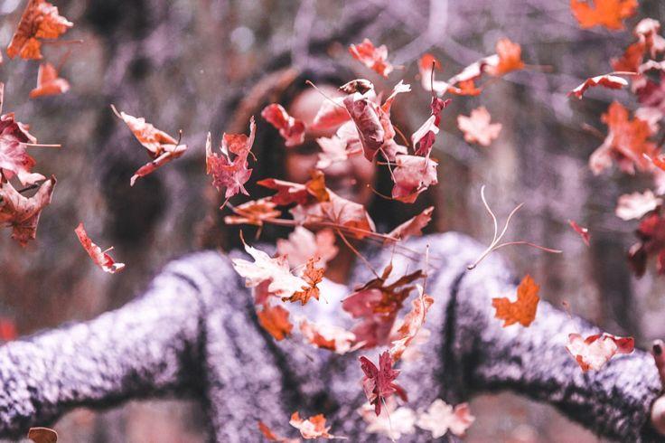 PHOTOGRAPHY: Toa Heftiba PHOTOGRAPHY: Niilo Isotalo PHOTOGRAPHY: Sweta Meininger PHOTOGRAPHY: Rhand McCoy PHOTOGRAPHY: freestocks.org  Hi loves!! So the Halloween is around the corner and mos…