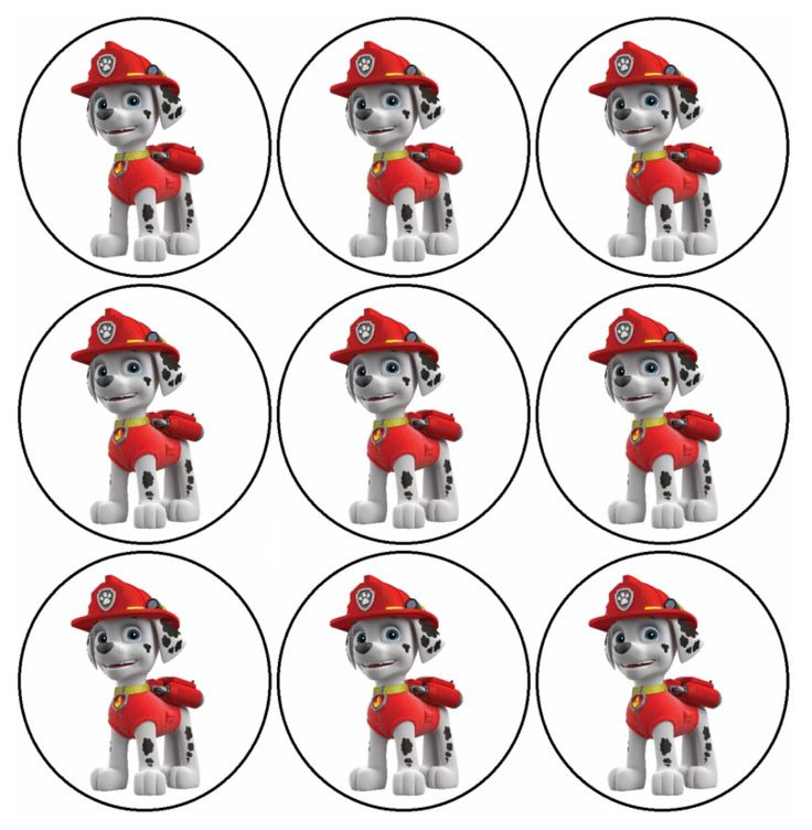 125 best pawpatrol images on Pinterest | Paw patrol party, Paw ...