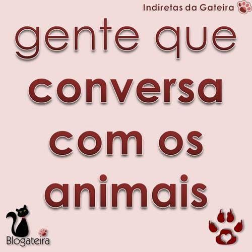 Blogateira: GENTE QUE CONVERSA COM OS ANIMAIS