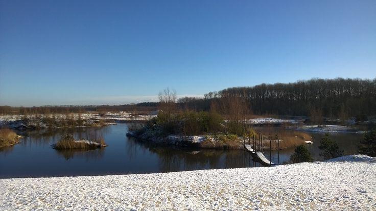 Winters landschap#Netl#winter