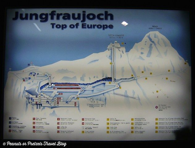 Taking the Train to the Top of Europe! The Jungfrau Mountain in Switzerland! -