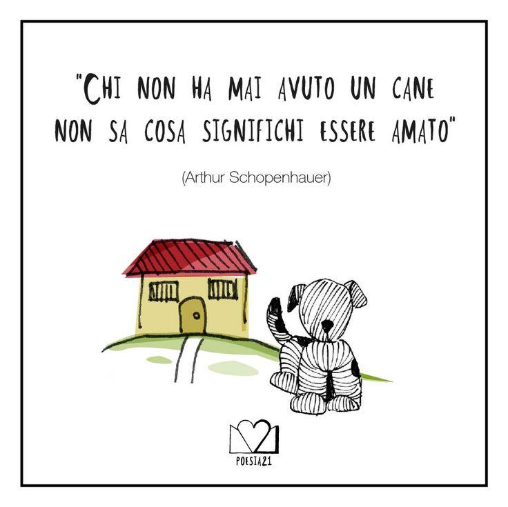 """""""Chi non ha mai avuto un cane, non sa cosa significhi essere amato"""" Arthur Schopenhauer"""