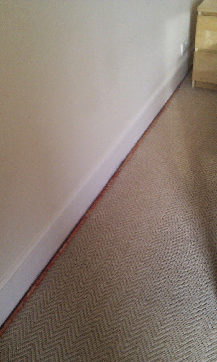 15 best carpet floors images on pinterest for the home bedrooms my carpets shrunk are you thinking about trying to save money by hiring a do it yourself carpet cleaner solutioingenieria Images