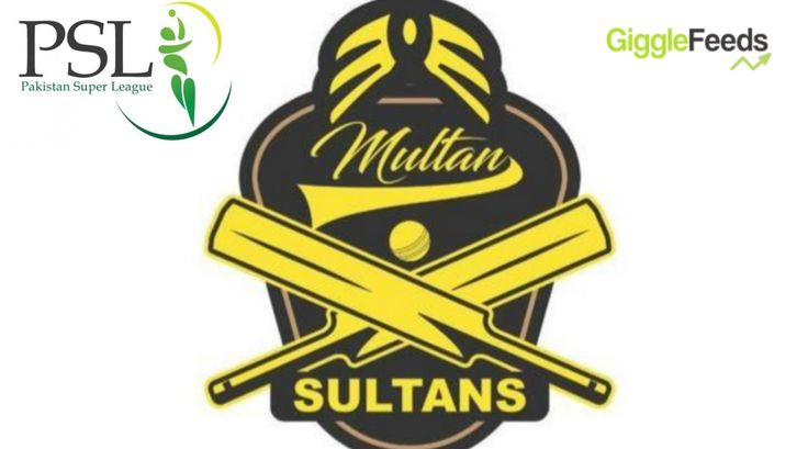 A sixth PSL team has been added to league with the Schon Group buying a franchise that will be based out of Multan & named as Multan Sultans.