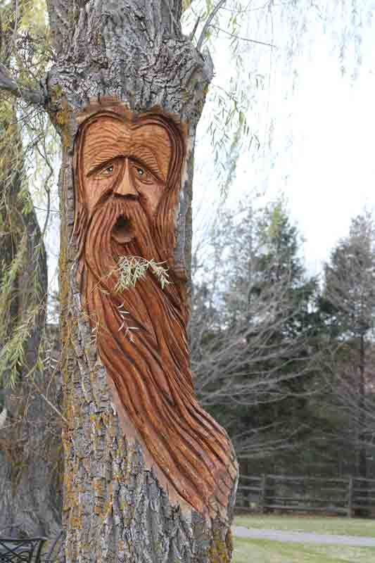 Best images about creative tree art on pinterest