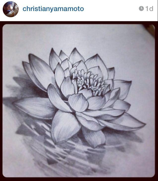 This lotus flower