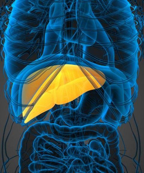 Non-Alcoholic Fatty Liver Disease - The Silent Killer
