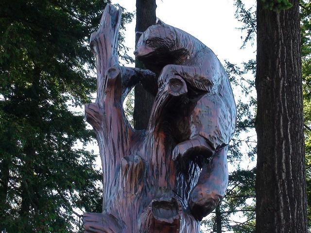 Hope british columbia racoons carving top by karen morton
