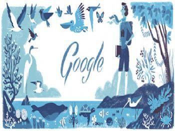 Google Doodle Celebrates Environmentalist Rachel Carson's 107th Birthday