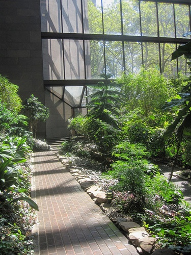 Ford Foundation building atrium - Dan Kiley and Kevin Roche