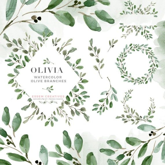 Watercolor Olive Branch Clipart Olive Leaves Clipart Wreath Etsy In 2021 Leaf Clipart Olive Branch Greenery Wedding Invitations