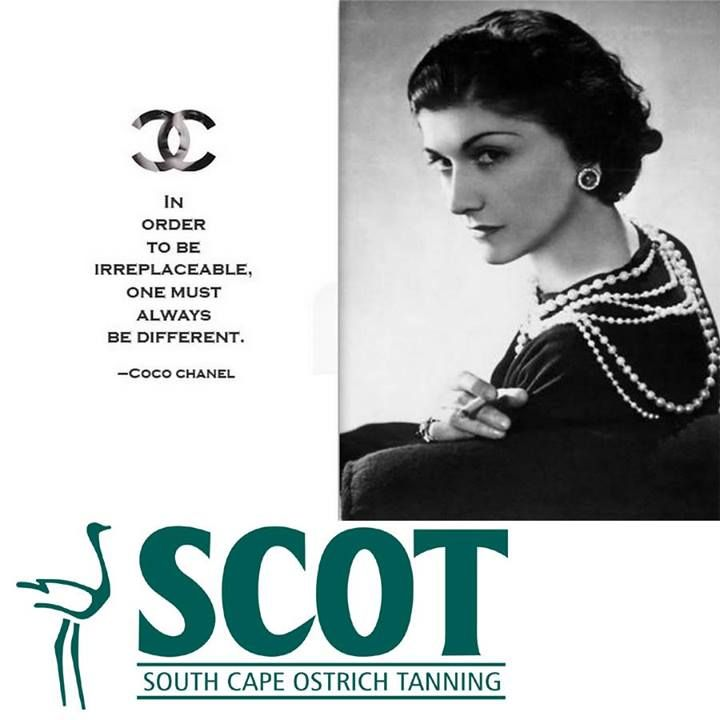 """In order to be irreplaceable, one must always be different"" - Coco Chanel. #quotes #motivational"