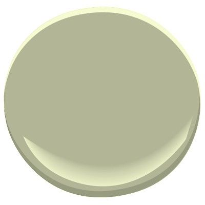 Urban Nature by Benjamin Moore -- This is the kitchen color from the house in Arlington.