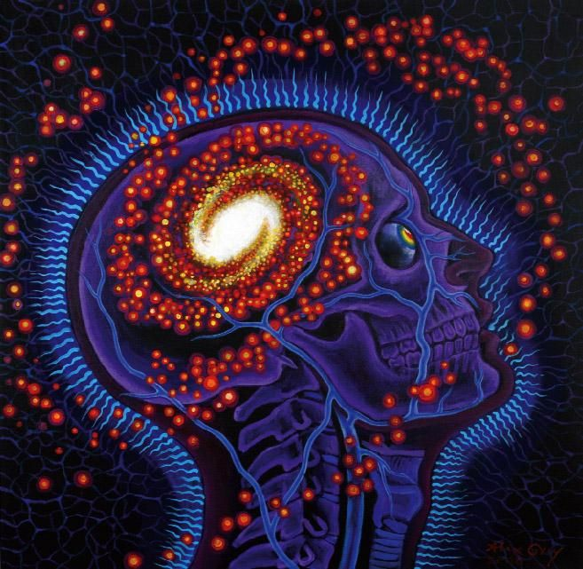 Image result for universal awareness alex grey