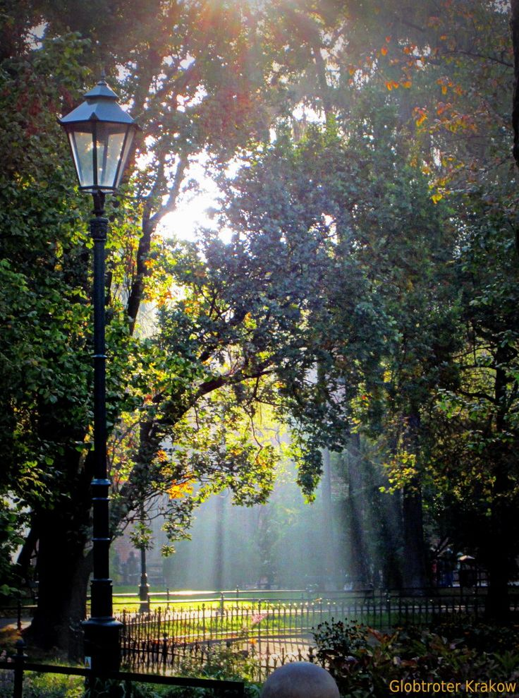 Autumn light in Cracow Planty