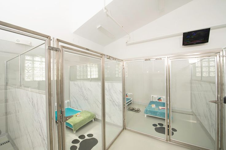 Pet Hotel Hadley is a unique upscale boarding kennel in Hadley, MA that incorporated a marble Wilson Art look with Glass Stall Fronts and K9 Cabins to create a very bright and open feeling facility.  Give Jessie a call or stop in and visit!