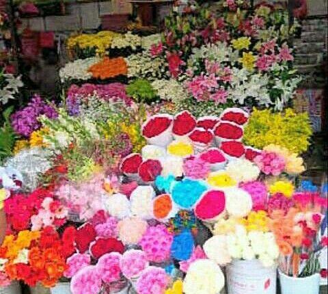 TOKO BUNGA DI JAKARTA FRESHCUT FLOWERS: TOKO BUNGA FRESHCUT FLOWERS