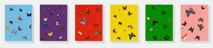 Damian Hirst, Colours, 2008