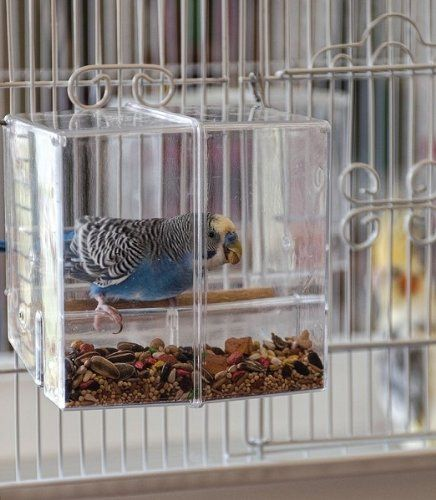 Spiffy Pet Products: Zebra Finch Cage Setup