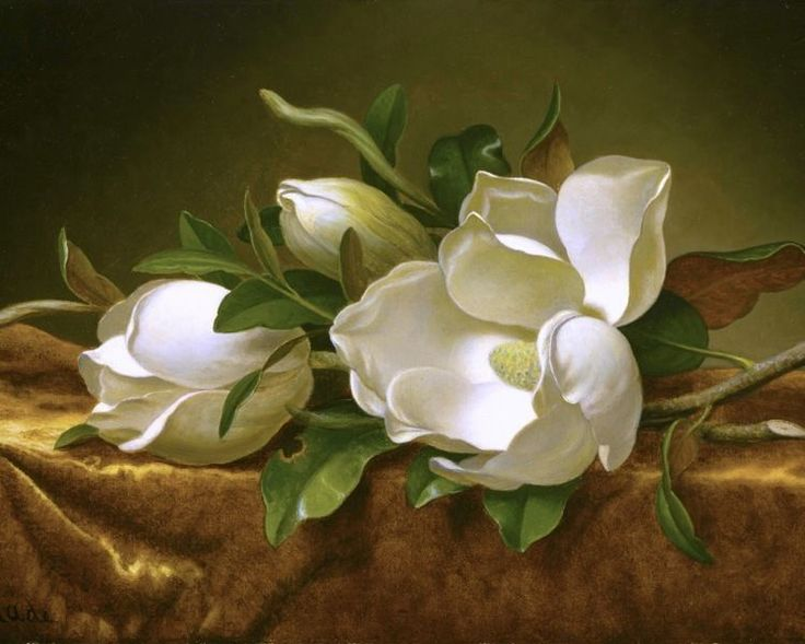 MAGNOLIA BLOSSOMS FLOWERS ON GOLD VELVET OIL PAINTING ART REAL CANVAS PRINT #Realism