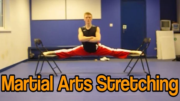 Martial Arts Stretching Tutorial (Get High Kicks/Splits)