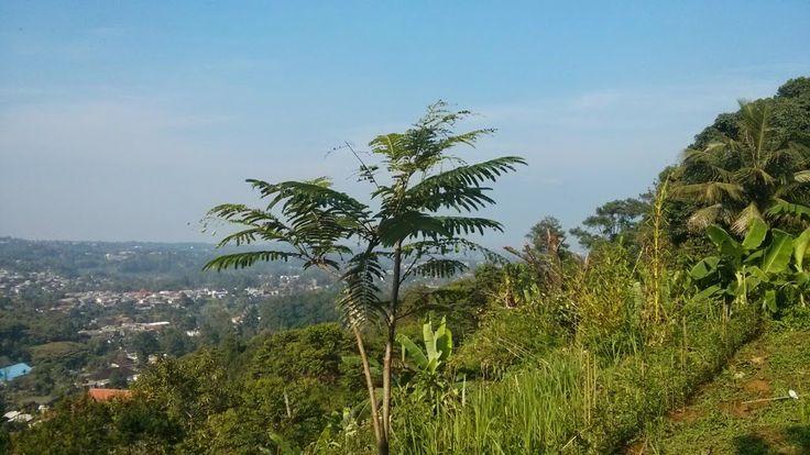 Home Sweet Home: Jual Tanah Mega Mendung, Puncak, View Bagus