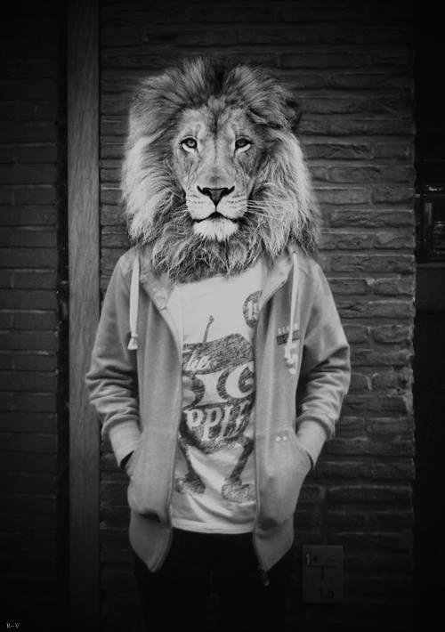 Si soy yo de quien te hablaron , la chica con cabeza de león .